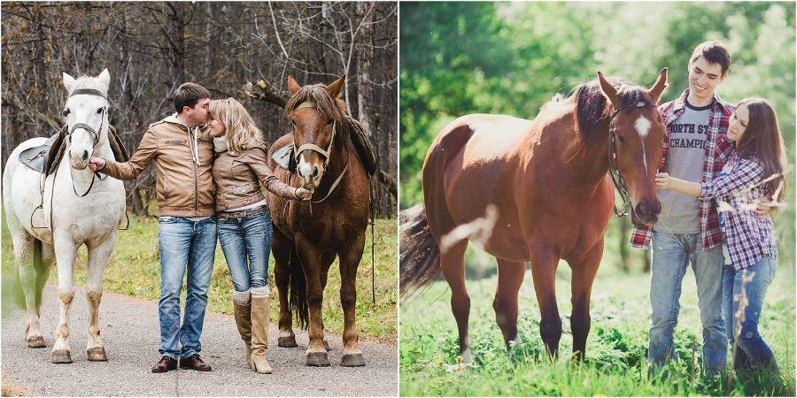 Любителям животных понравится прогулка на лошадях