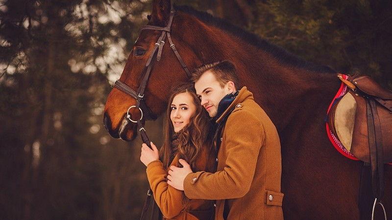 Лошади на фотосессии в осеннее время года