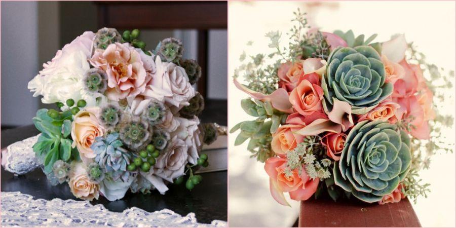 Суккуленты хорошо смотрится с цветами