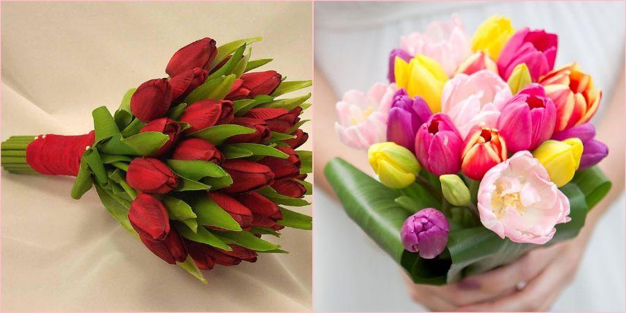 Тюльпаны бывают разных расцветок