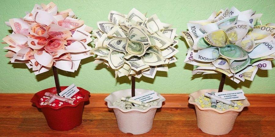 Часто в такой день дарят денежное дерево
