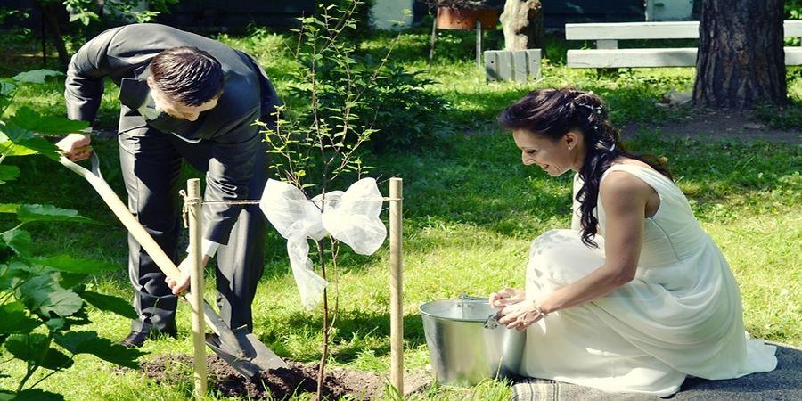 Согласно традициям супруги вместе высаживали дерево