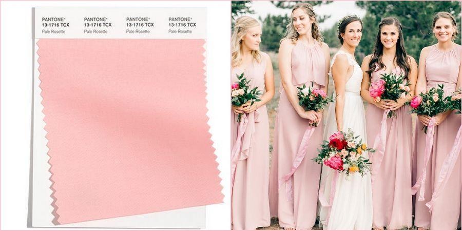 Оттенок бледная розочка прекрасно будет смотреться в качестве наряда невесты