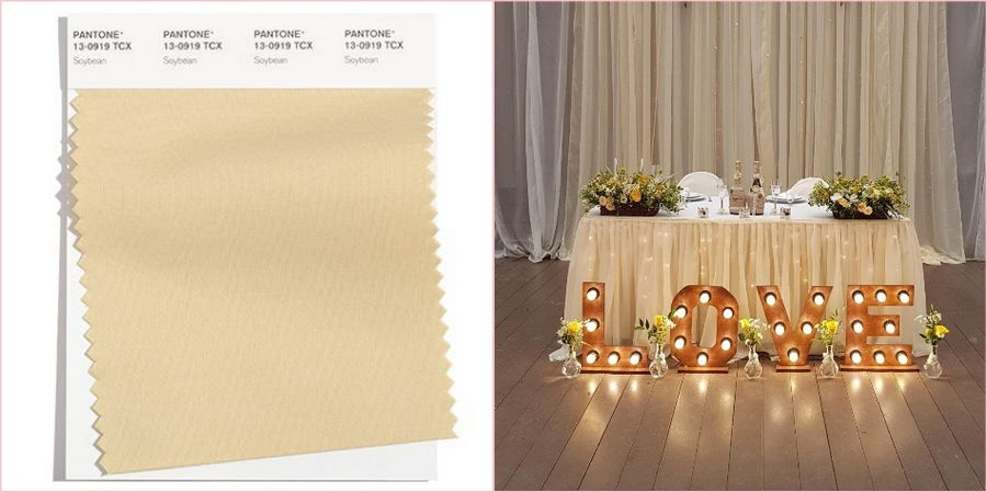 Соя станет замечательной находкой для декорирования классического свадебного торжества